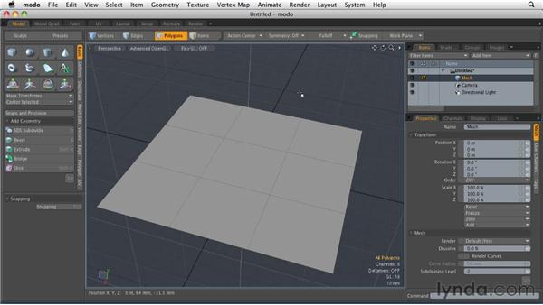 Understanding the elements of a 3D model: MODO 501 Essential Training