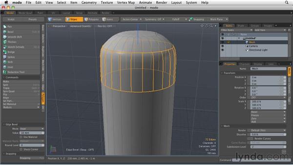 Building a model: MODO 501 Essential Training