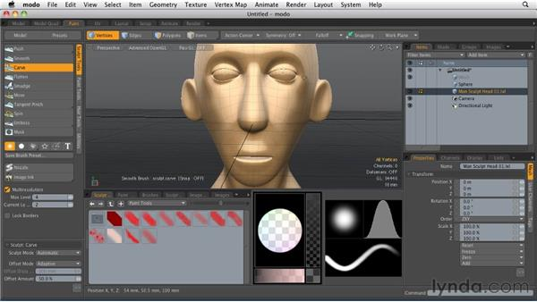 Sculpting models: MODO 501 Essential Training