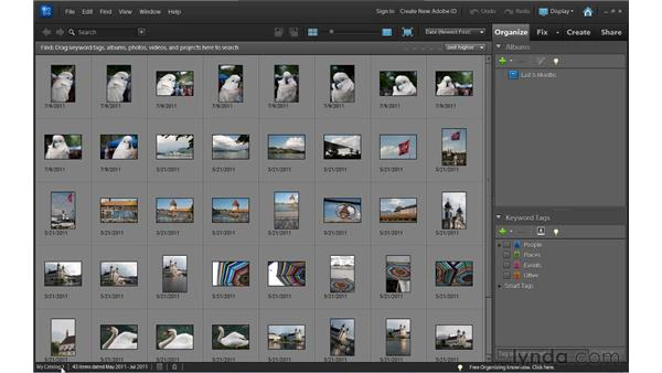 Working with Organizer catalogs: Up and Running with Photoshop Elements 10