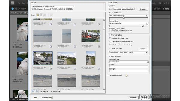 Importing photos from a camera: Up and Running with Photoshop Elements 10