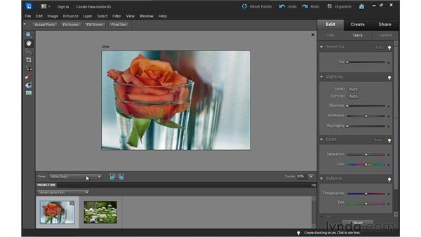 Quick Edit basics: Up and Running with Photoshop Elements 10