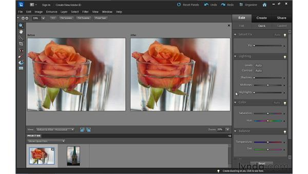 Fixing lighting in Quick Edit: Up and Running with Photoshop Elements 10
