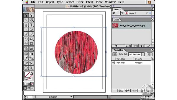 linked images: Learning Illustrator 10
