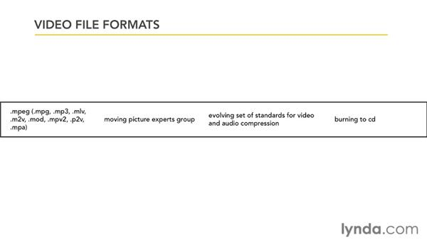 Working with video formats: PowerPoint 2010: Audio and Video in Depth