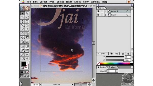 auto trace: Learning Illustrator 10