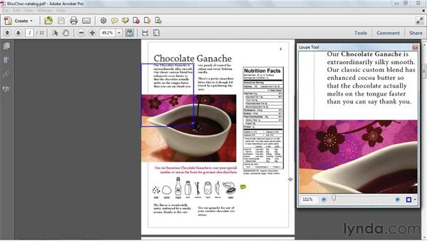 Faster zooming with the Loupe tool: Acrobat X Tips and Tricks