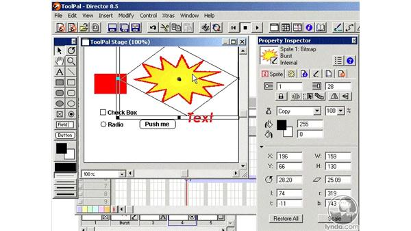 the tool palette part 2: Learning Director 8.5