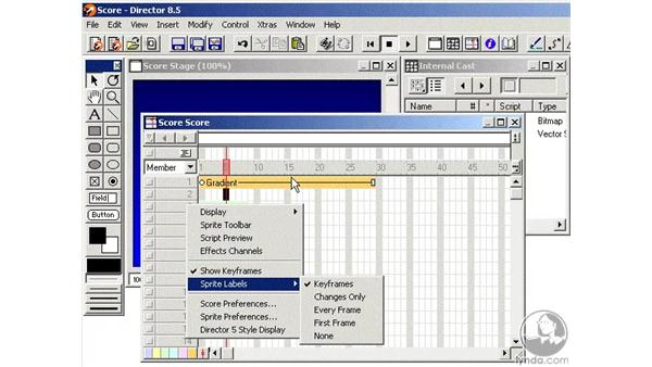 the score part 3: Learning Director 8.5