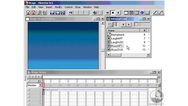sound formats: Learning Director 8.5