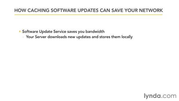 How caching software updates can save your network: Mac OS X Lion Server Essential Training