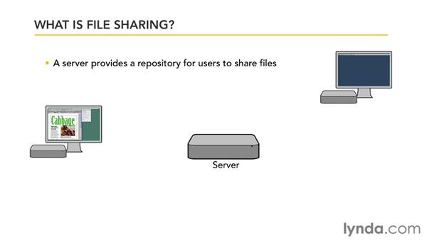 What is file sharing?: Mac OS X Lion Server Essential Training