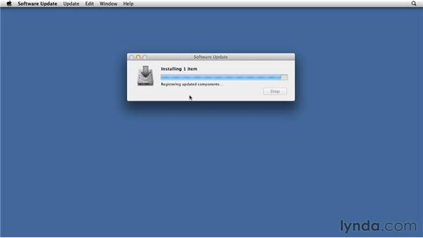 Configuring Software Update Server without using Profiles: Mac OS X Lion Server Essential Training