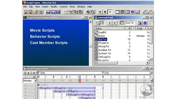 types of scripts: Learning Director 8.5