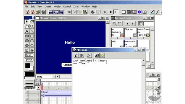 the message window: Learning Director 8.5