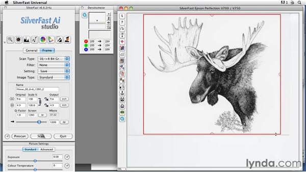 Scanning complex line art : Scanning Techniques for Photography, Art, and Design