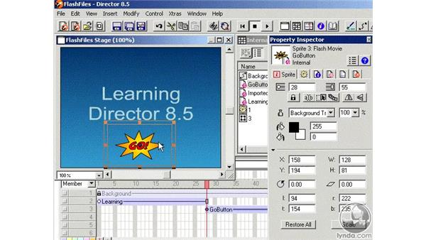 flash files part 2: Learning Director 8.5