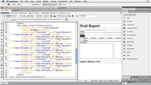 Working with checkboxes: Building Android and iOS Apps with Dreamweaver CS5.5