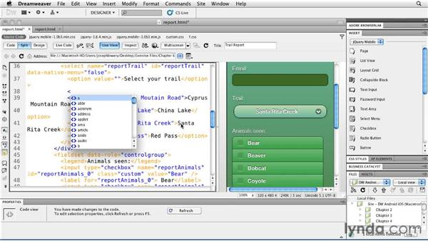 Creating custom select menus: Building Android and iOS Apps with Dreamweaver CS5.5