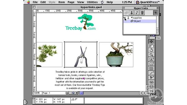 creating hyperlinks: Learning QuarkXPress 5