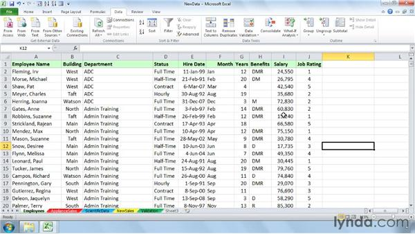 : Setting Up a Database in Excel 2010