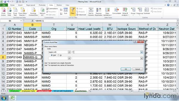 Creating custom filters: Managing and Analyzing Data in Excel 2010