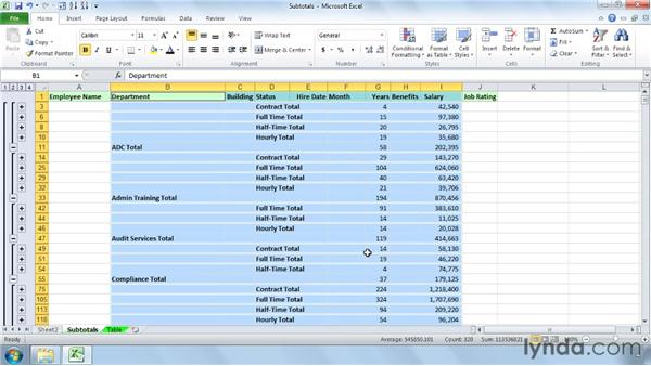 Creating multiple levels and copying subtotals: Managing and Analyzing Data in Excel 2010