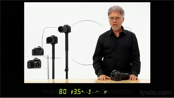 Using the viewfinder display: Shooting with the Nikon D7000