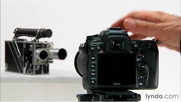 Understanding autofocus basics: Shooting with the Nikon D7000