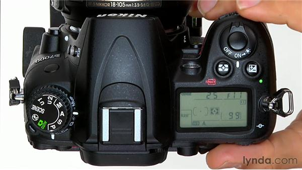 Aperture Priority mode: Shooting with the Nikon D7000