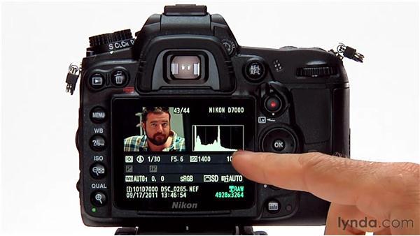 The metadata display: Shooting with the Nikon D7000