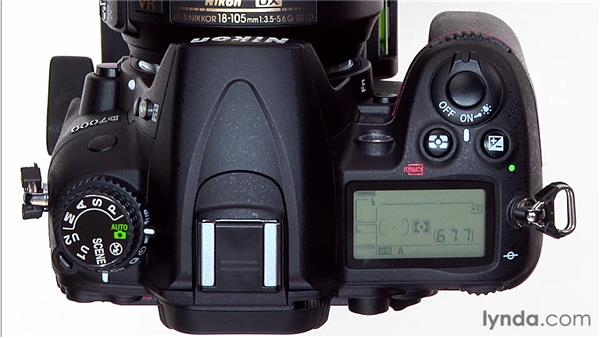 Fill flash: Shooting with the Nikon D7000