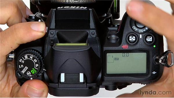 The Exposure Compensation setting: Shooting with the Nikon D7000