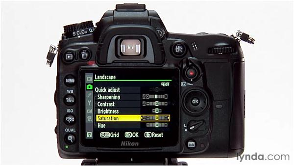 Modifying a picture control: Shooting with the Nikon D7000