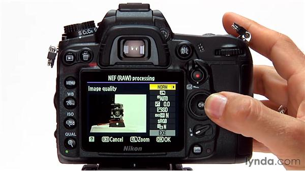 NEF (raw) processing: Shooting with the Nikon D7000