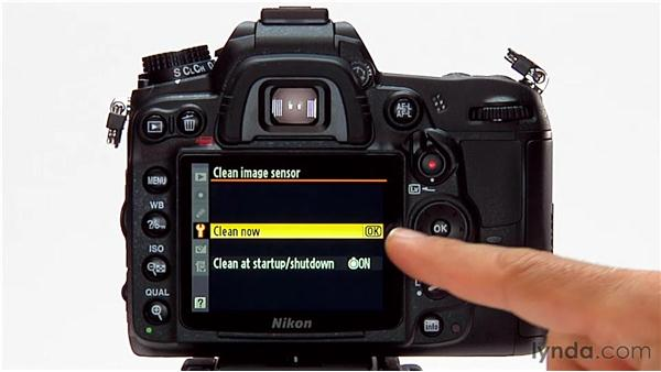 Camera and sensor cleaning: Shooting with the Nikon D7000