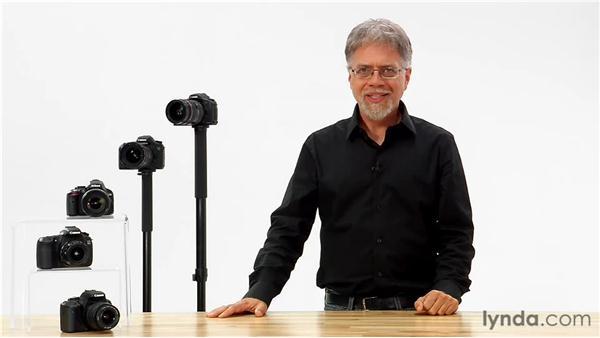 Goodbye: Shooting with the Nikon D7000