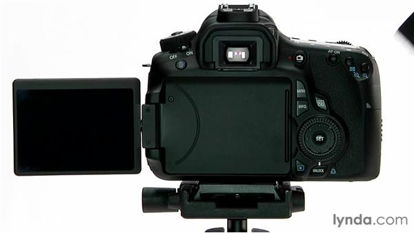 The LCD screen: Shooting with the Canon 60D