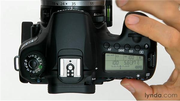 Exposure compensation: Shooting with the Canon 60D