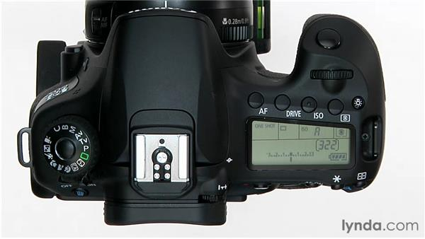 Program shift: Shooting with the Canon 60D