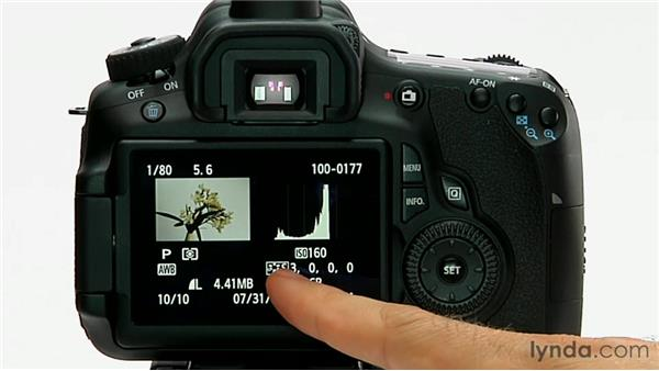 Metadata display: Shooting with the Canon 60D