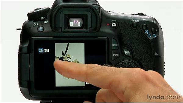 Rotation: Shooting with the Canon 60D