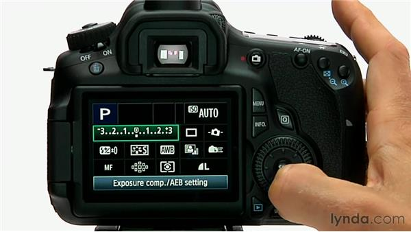 Flash exposure compensation: Shooting with the Canon 60D