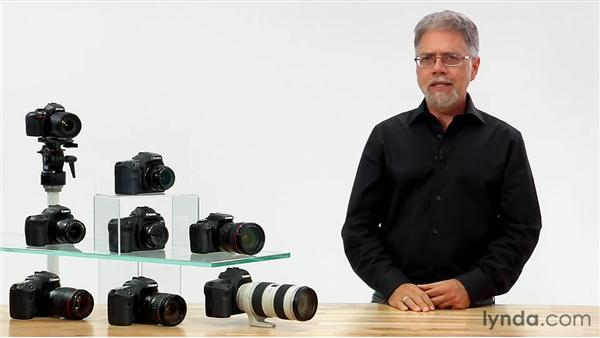 Live View's drawbacks: Shooting with the Canon 60D