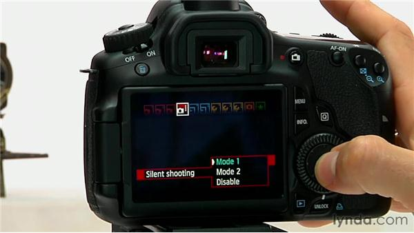 Other Live View options: Shooting with the Canon 60D