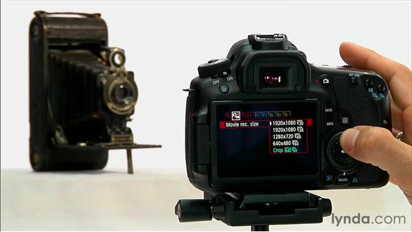 Focusing and menu options: Shooting with the Canon 60D