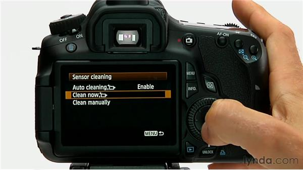 Camera and sensor cleaning: Shooting with the Canon 60D