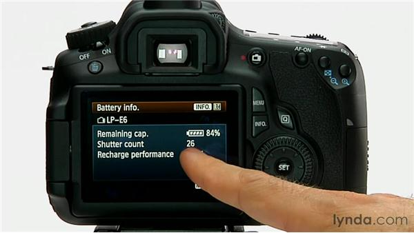 Battery info: Shooting with the Canon 60D
