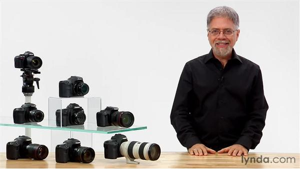 Goodbye: Shooting with the Canon 60D