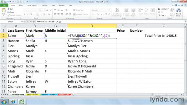 Combining data from different columns via concatenation: Cleaning Up Your Excel 2010 Data